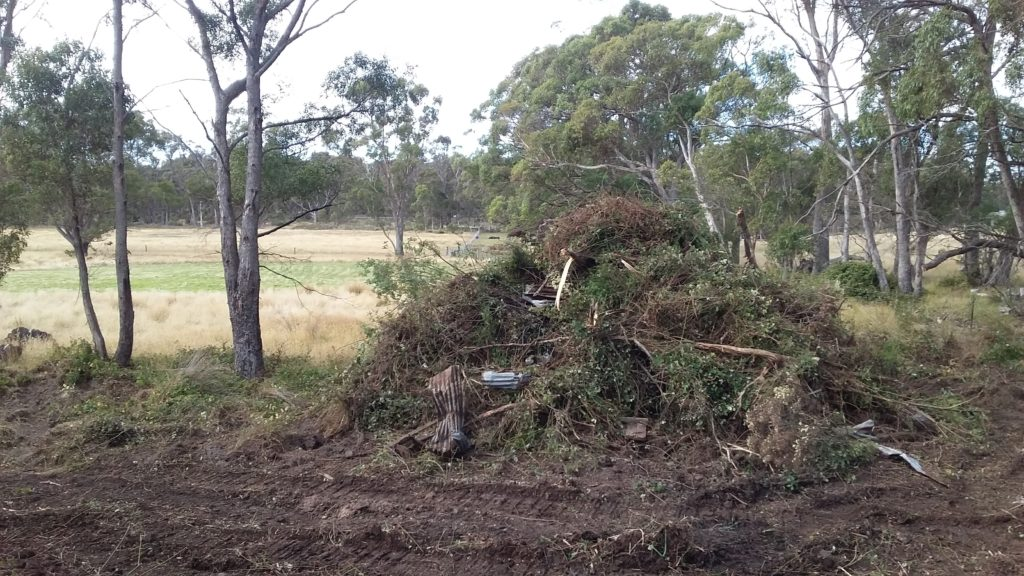 Photo of vegetation being cleared