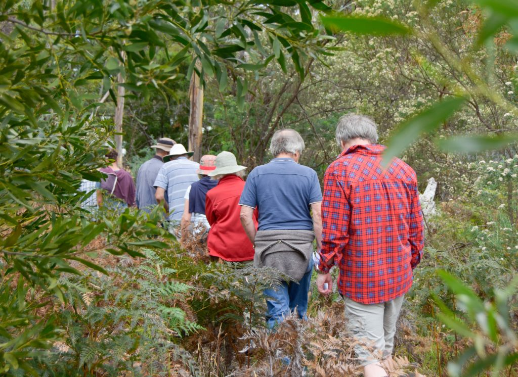 Photo of community members walking in the bushland