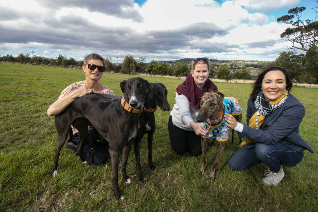 Greyhound Dog Owners with Acting Mayor Jo Westwood in proposed area for greyhounds